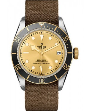 Replica Tudor Heritage Black Bay Watch M79733N-0006