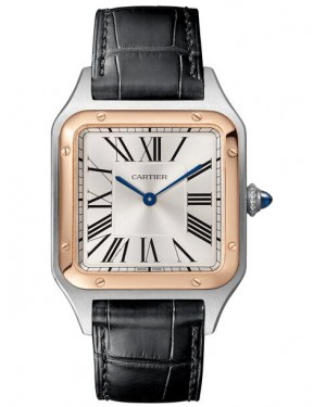 Fake Cartier Santos Dumont Large Mens Watch W2SA0011