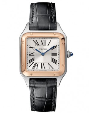 Fake Cartier Santos Dumont Small Ladies Watch W2SA0012
