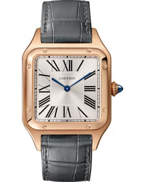 Fake Cartier Santos Dumont Large Mens Watch WGSA0021