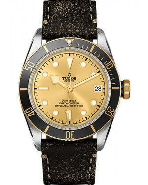 Replica Tudor Heritage Black Bay Watch M79733N-0003